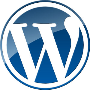 wordpress training for clients